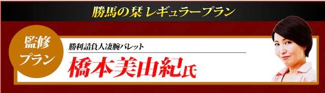 勝馬の栞の有料情報4