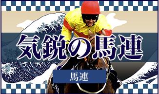 TENKEI(天啓) 有料プラン 気鋭の馬連