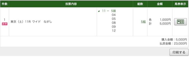 うまくる 10月24日東京11レースPAT画像