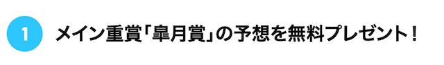 ばかうけ:皐月賞公開