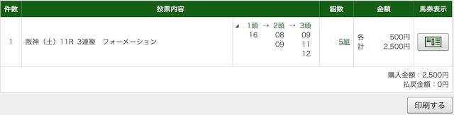 勝ち馬の定石:阪神11レースPAT画像
