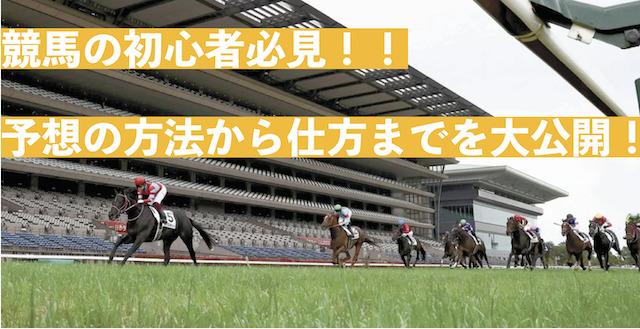 競馬初心者のサムネイル画像